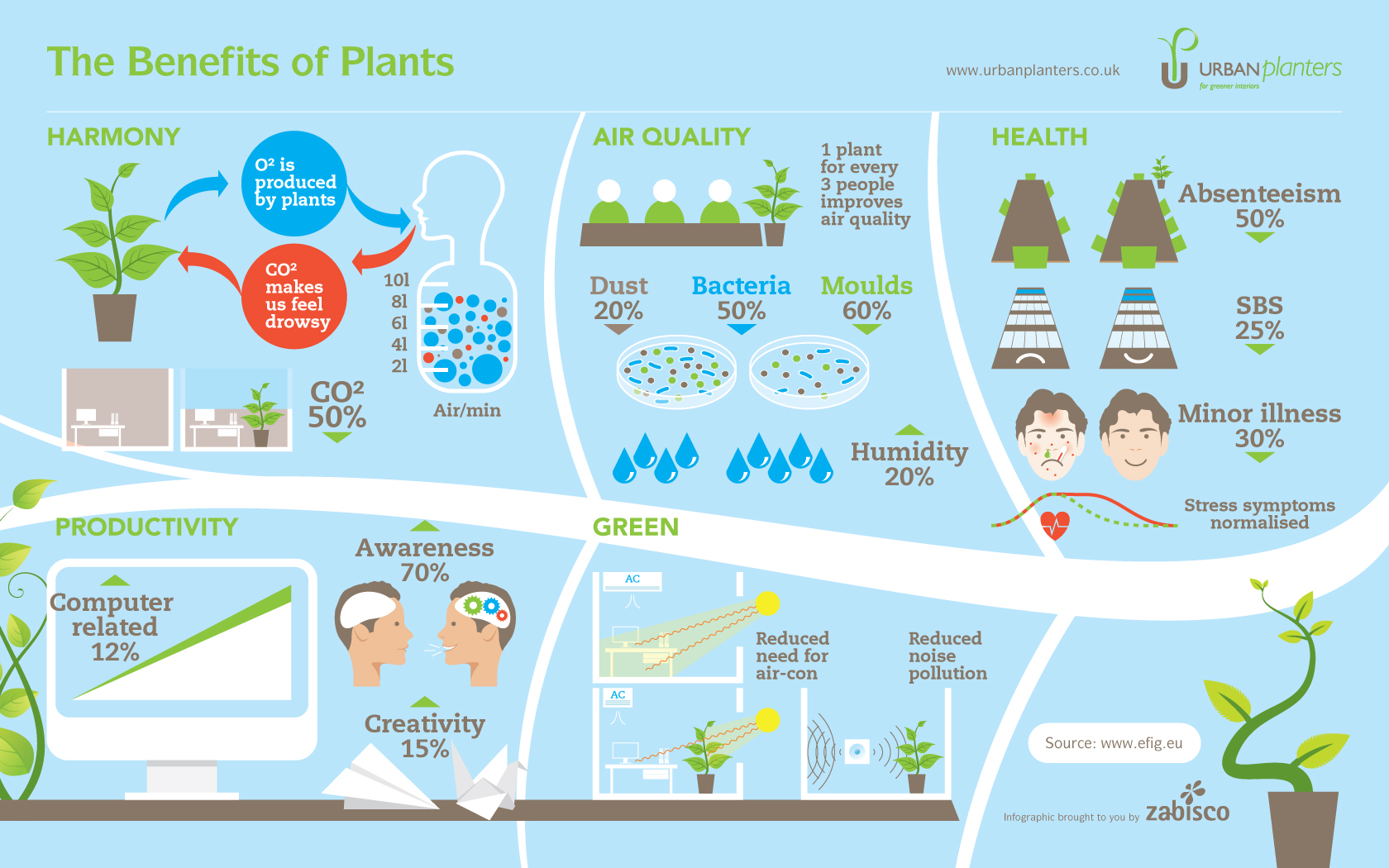 Plants in your house and workplace