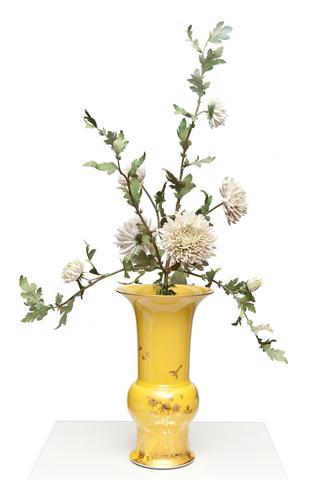Eternal Flower Collection