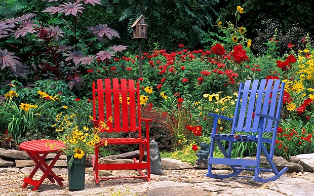 add-some-colour-to-garden